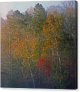 Autumn Morning Canvas Print