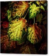 Autumn Motif Canvas Print