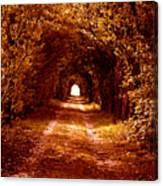 Autumn Of Life Canvas Print