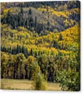 Autumn On A Colorado Range Canvas Print