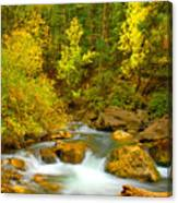 Autumn On Big Cottonwood River Canvas Print