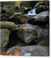 Autumn On Little River In The Smoky Mountains Canvas Print