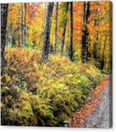 Autumn On Long Pond Road Canvas Print