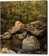 Autumn On The Creek  Canvas Print