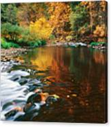 Autumn On The Merced River Yosemite Np Canvas Print