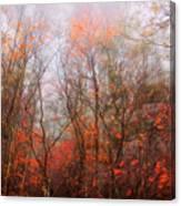 Autumn On The Mountain Canvas Print