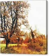 Autumn On White Canvas Print