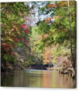 Autumn Over Golden Waters Canvas Print