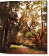 Autumn Passage II Canvas Print
