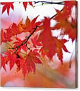 Autumn Pastel Canvas Print