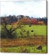 Autumn Pasture Canvas Print