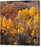 Autumn Patchwork Canvas Print