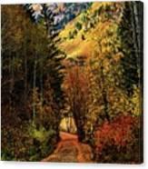 Autumn Path To Stewart Falls Canvas Print