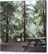 Autumn Picnic In The Woods  Canvas Print