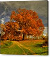 Autumn Picnic On The Hill Canvas Print