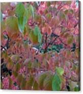 Autumn Pink Poster Canvas Print