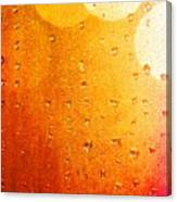 Autumn Raindrops Canvas Print