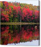Autumn Reflected Canvas Print