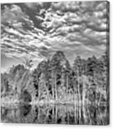 Autumn Reflection 2 Bw Canvas Print