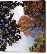 Autumn Reflection Canvas Print