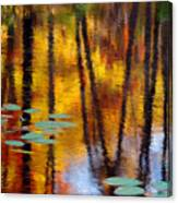 Autumn Reflections II Canvas Print