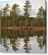 Autumn Reflector Canvas Print