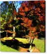 Autumn Refraction Canvas Print