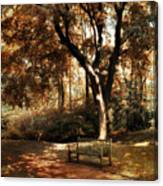 Autumn Repose Canvas Print