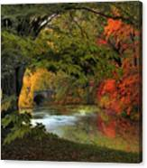Autumn Reverie Canvas Print