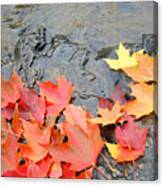 Autumn River Landscape Red Fall Leaves Canvas Print