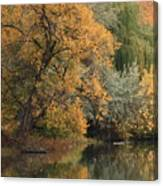 Autumn Riverbank Canvas Print
