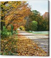 Autumn Road With Fence  Canvas Print
