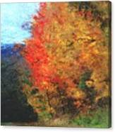 Autumn Roadside Canvas Print