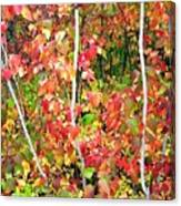 Autumn Sanctuary Canvas Print