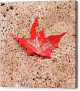 Autumn Sand Canvas Print