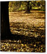 Autumn Scatterlings Canvas Print