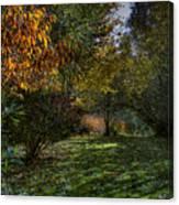 Autumn Shadows Canvas Print