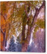 Autumn Snow Park Bench Peace Canvas Print