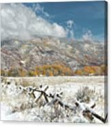 Autumn Snowfall In Aspen Canvas Print