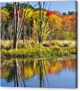 Autumn Splendor - Bolton Flats Canvas Print