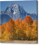 Autumn Splendor In Grand Teton Canvas Print