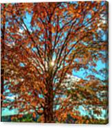 Autumn Star- Paint Canvas Print