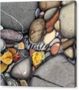 Autumn Stones Canvas Print