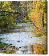 Autumn Stream Reflections Canvas Print