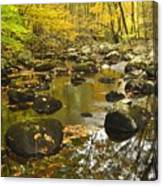 Autumn Stream Reflections Canvas Print