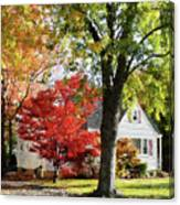 Autumn Street With Red Tree Canvas Print