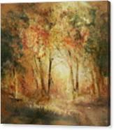 Autumn Sun Canvas Print