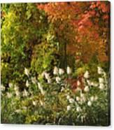 Autumn Tranquility 3 Canvas Print