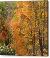 Autumn Tranquility 4 Canvas Print