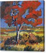 Autumn Tree Canvas Print